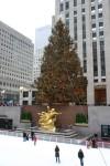 """""""The Tree"""" in Rockefeller Center."""