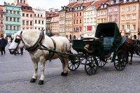 Highlight for Album: Poland